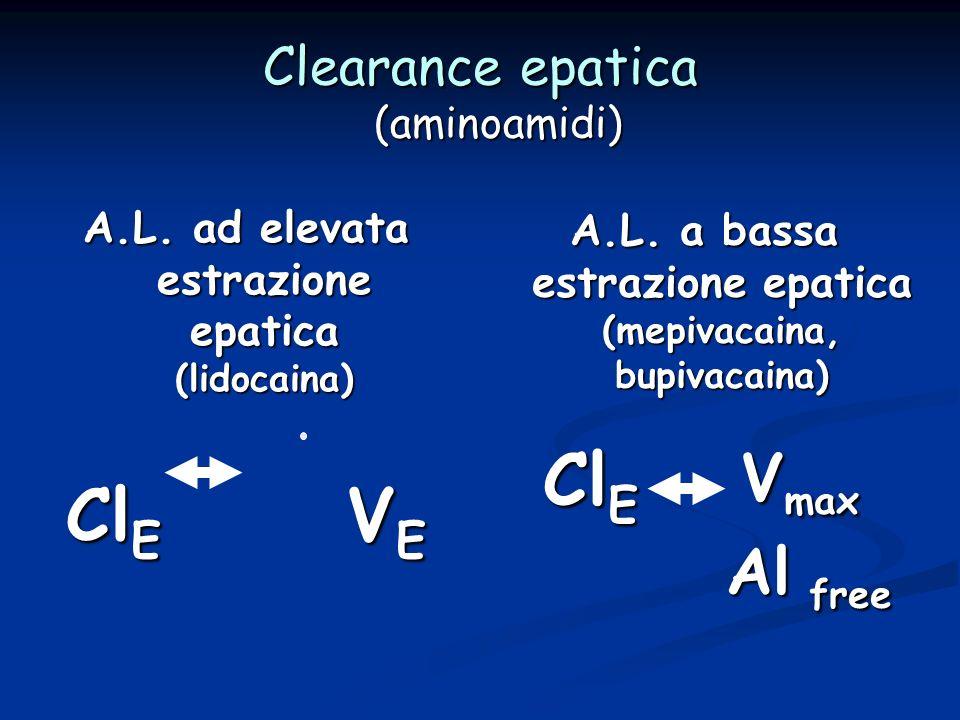 Clearance epatica (aminoamidi)