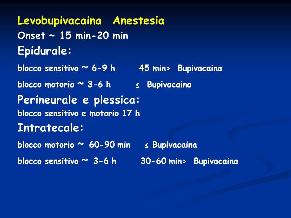Levobupivacaina Anestesia Epidurale: