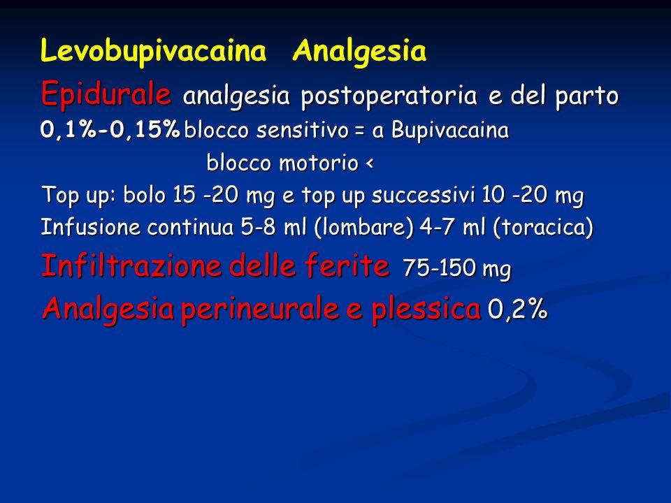 Levobupivacaina Analgesia