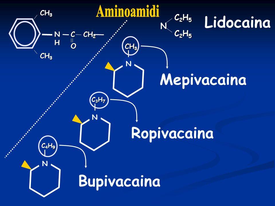 Lidocaina Mepivacaina Ropivacaina Bupivacaina Aminoamidi N C2H5 CH3 NH