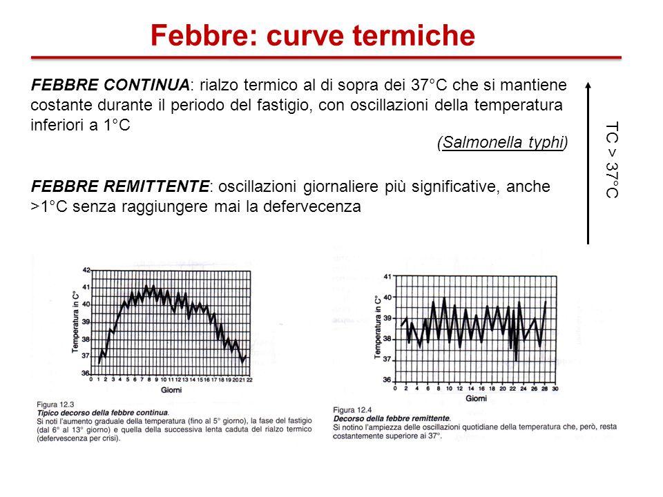 Febbre: curve termiche