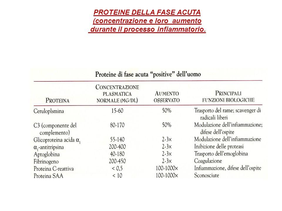 PROTEINE DELLA FASE ACUTA (concentrazione e loro aumento