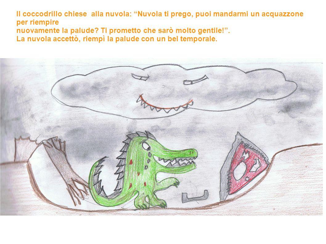 Il coccodrillo chiese alla nuvola: Nuvola ti prego, puoi mandarmi un acquazzone per riempire nuovamente la palude.