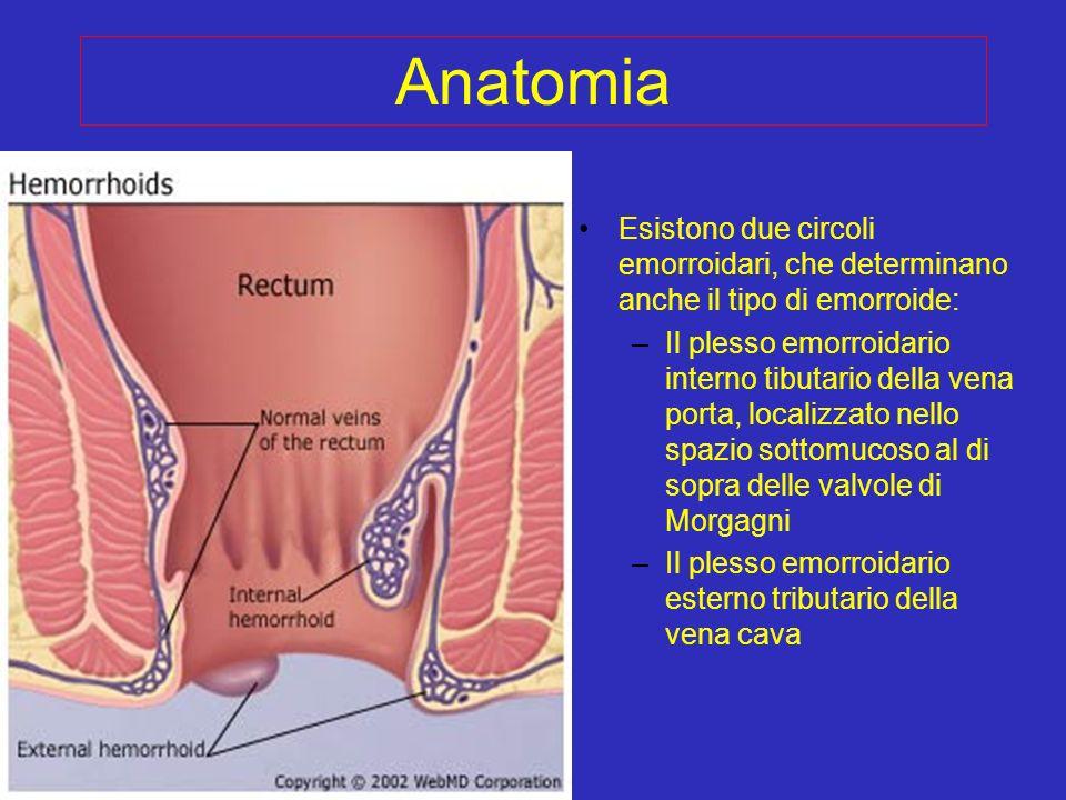 Anatomia Esistono due circoli emorroidari, che determinano anche il tipo di emorroide: