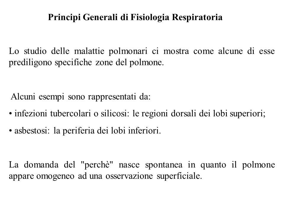 Principi Generali di Fisiologia Respiratoria