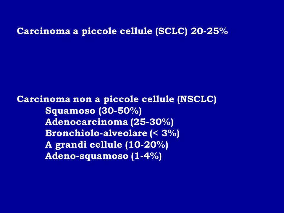 Carcinoma a piccole cellule (SCLC) 20-25%