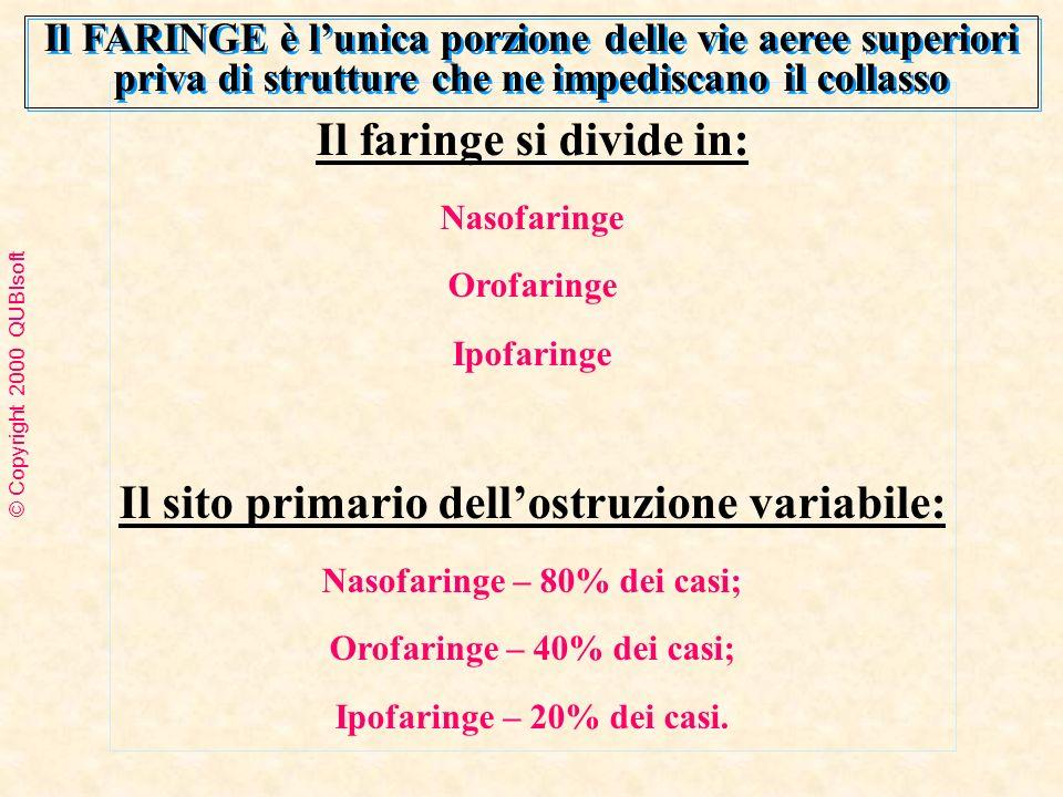 Il faringe si divide in: Il sito primario dell'ostruzione variabile: