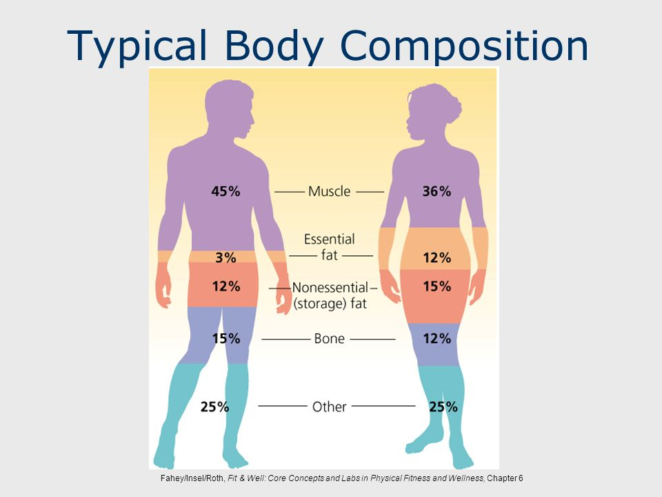Typical Body Composition