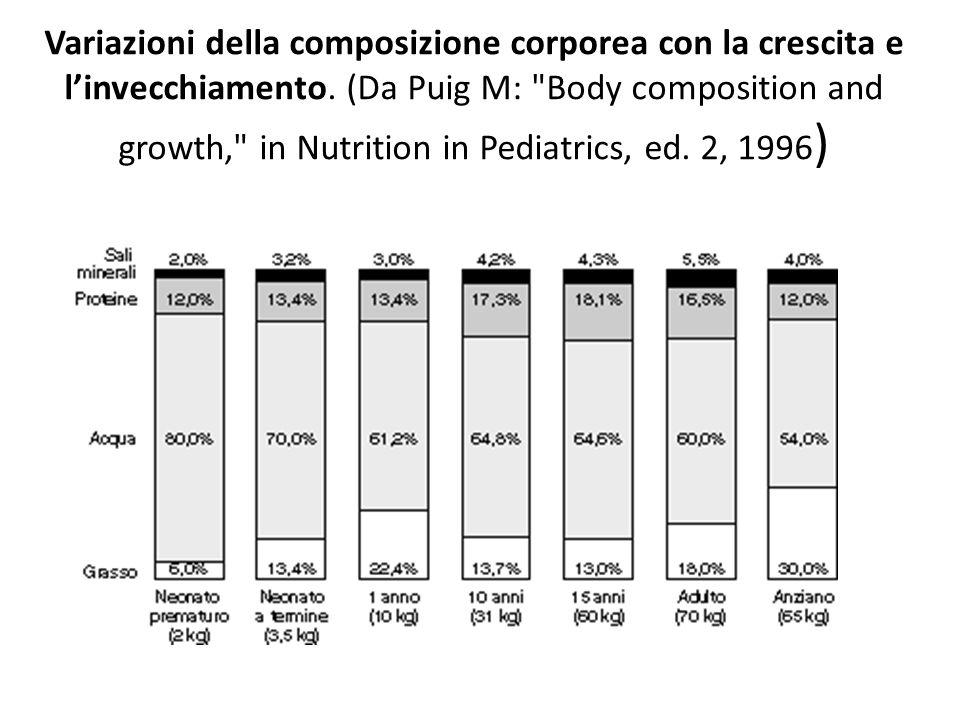 Variazioni della composizione corporea con la crescita e l'invecchiamento.