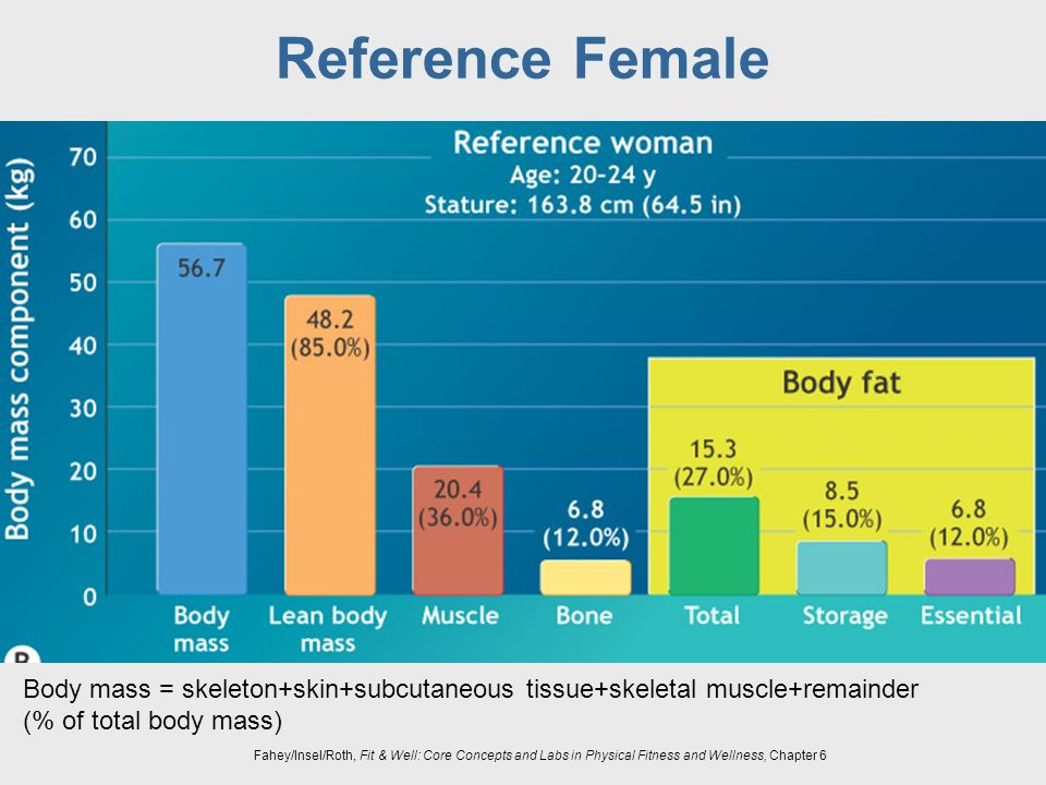 Reference Female Body mass = skeleton+skin+subcutaneous tissue+skeletal muscle+remainder.