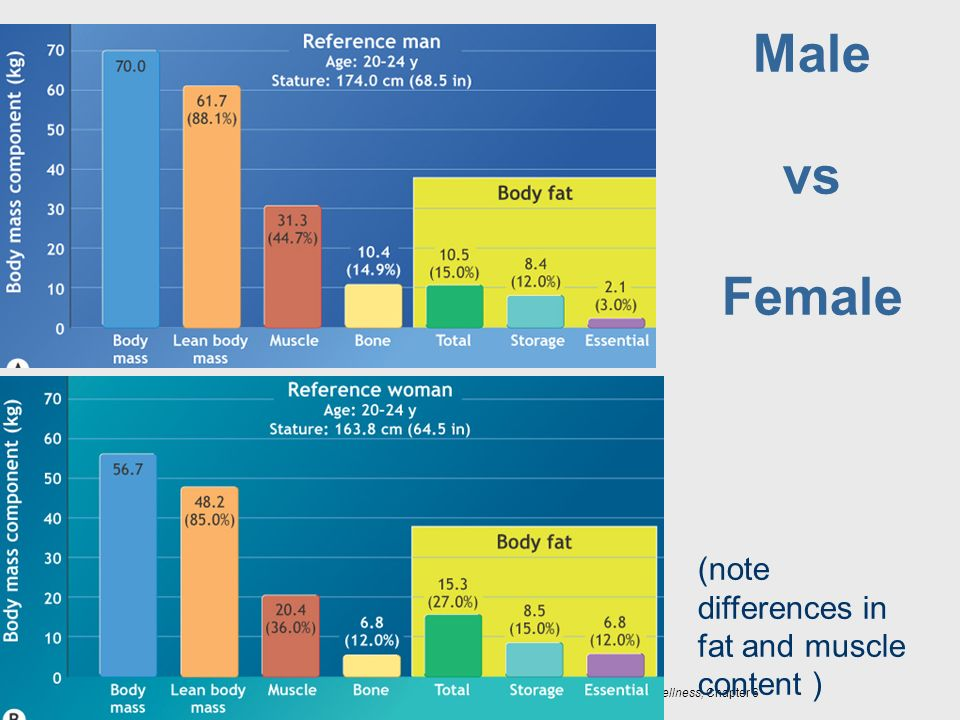 Male vs Female (note differences in fat and muscle content )