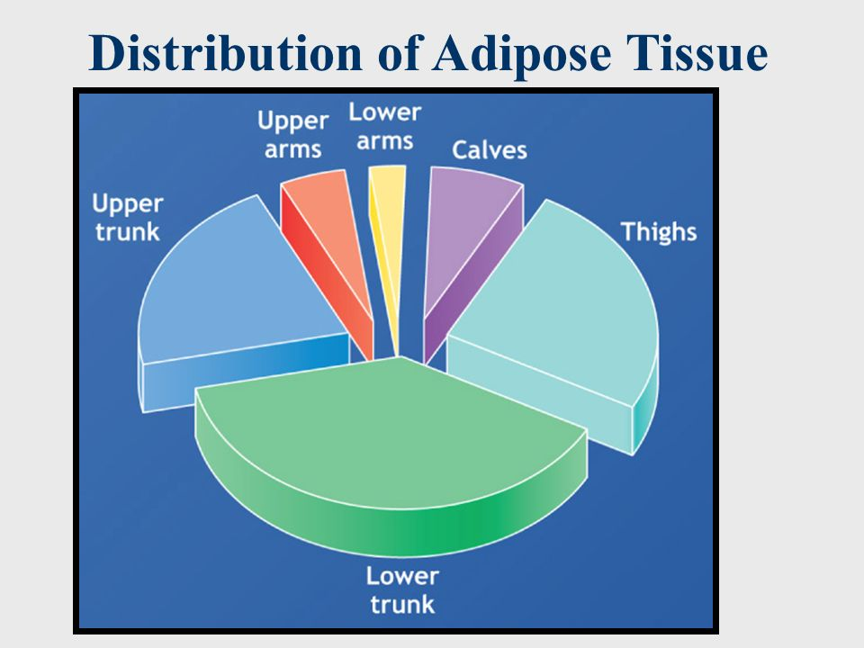 Distribution of Adipose Tissue