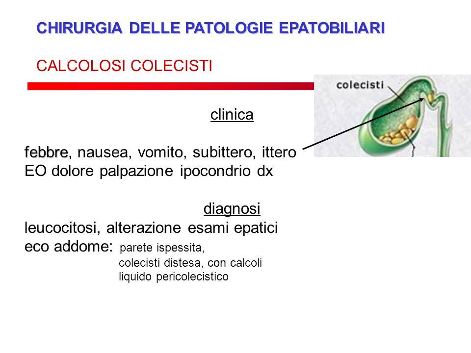 CHIRURGIA DELLE PATOLOGIE EPATOBILIARI CALCOLOSI COLECISTI