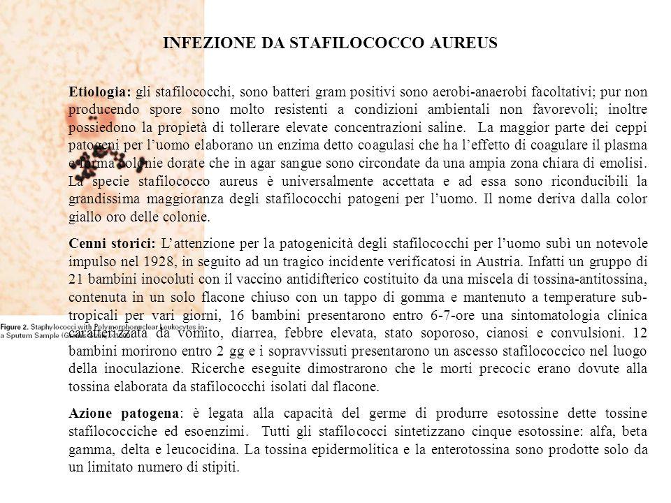 INFEZIONE DA STAFILOCOCCO AUREUS
