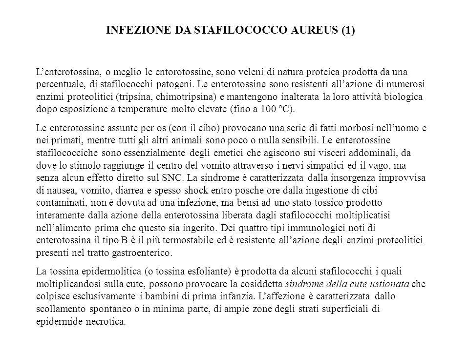 INFEZIONE DA STAFILOCOCCO AUREUS (1)