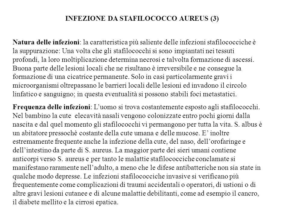 INFEZIONE DA STAFILOCOCCO AUREUS (3)