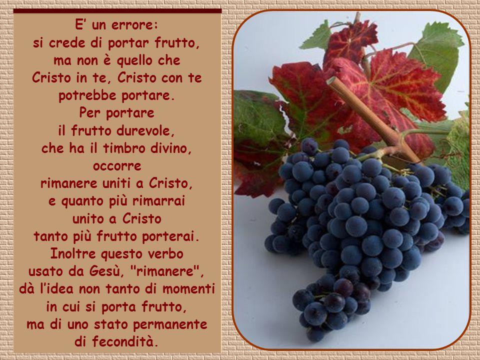 E' un errore: si crede di portar frutto, ma non è quello che Cristo in te, Cristo con te potrebbe portare.