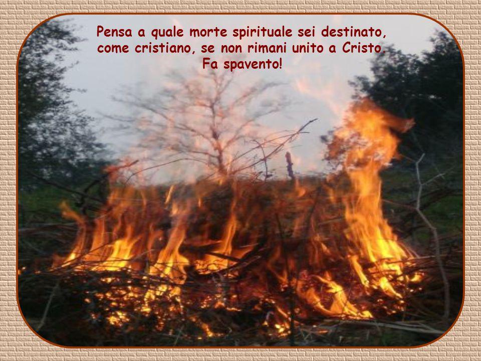 Pensa a quale morte spirituale sei destinato, come cristiano, se non rimani unito a Cristo.