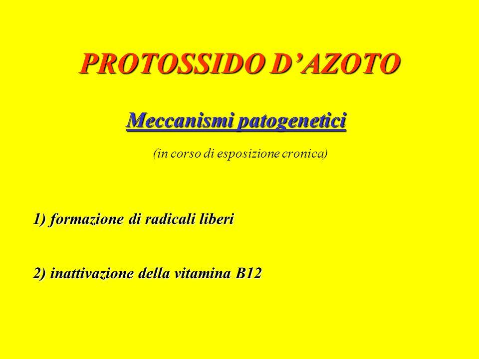 PROTOSSIDO D'AZOTO Meccanismi patogenetici