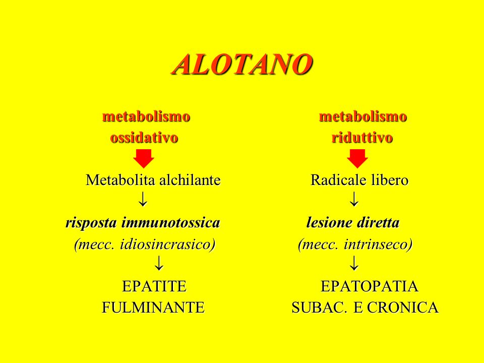 ALOTANO metabolismo metabolismo ossidativo riduttivo