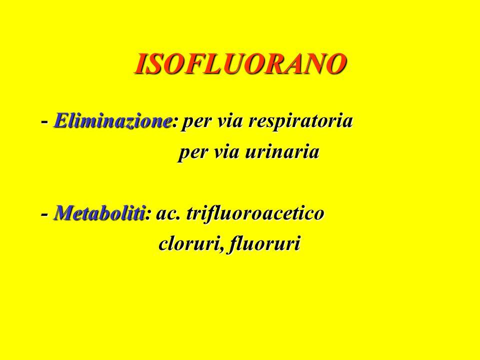 ISOFLUORANO - Eliminazione: per via respiratoria per via urinaria