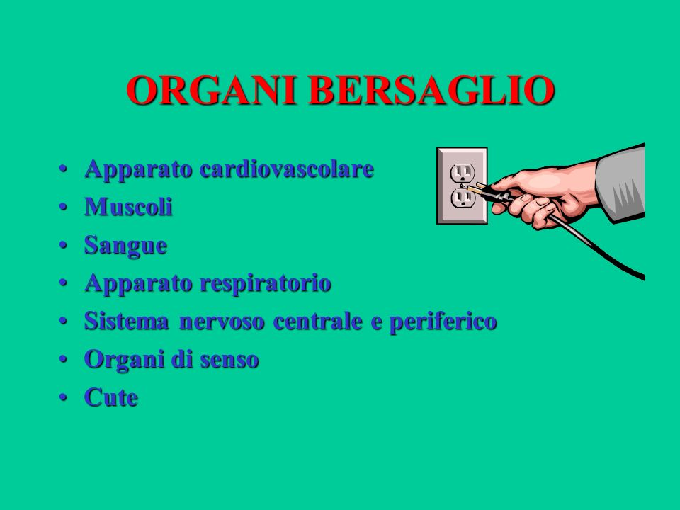 ORGANI BERSAGLIO Apparato cardiovascolare Muscoli Sangue