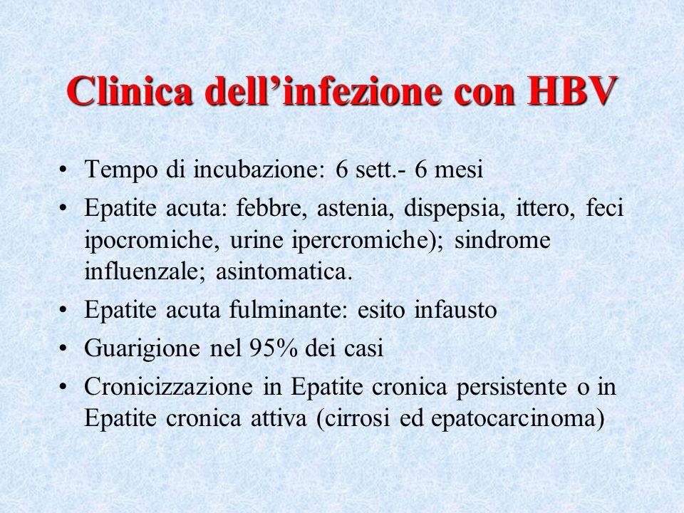 Clinica dell'infezione con HBV