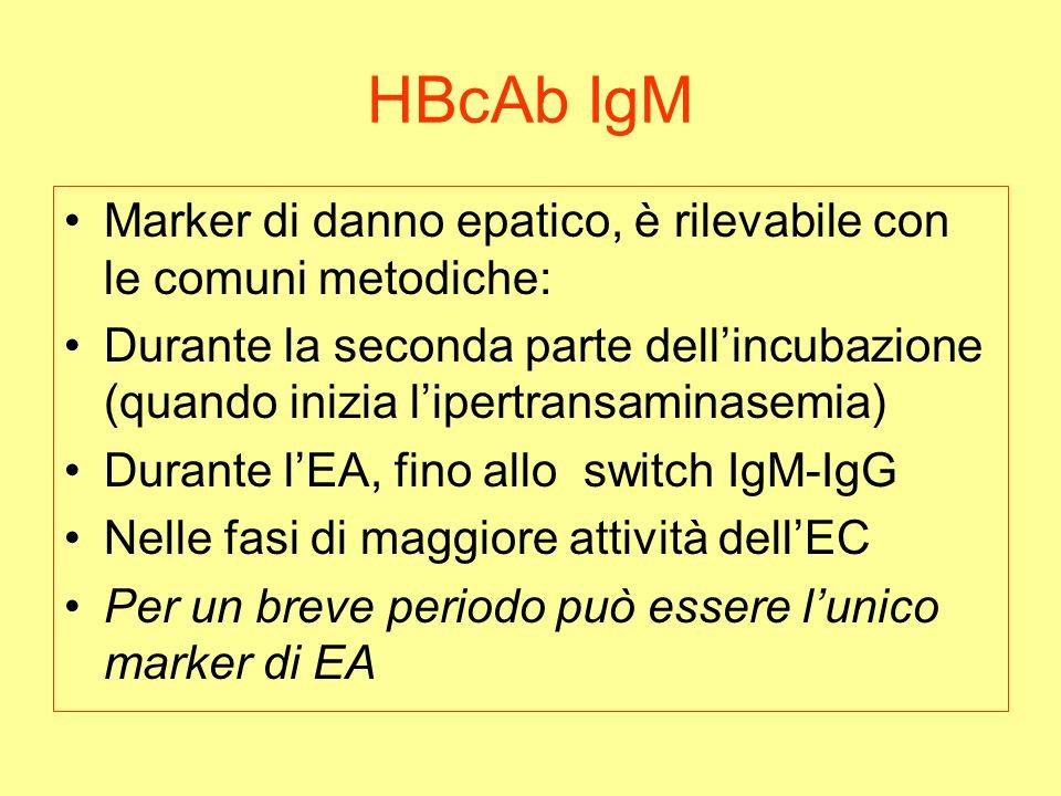 HBcAb IgM Marker di danno epatico, è rilevabile con le comuni metodiche: