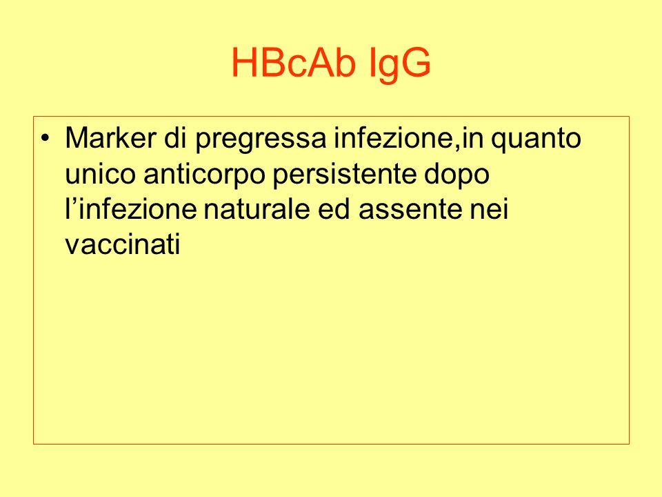 HBcAb IgG Marker di pregressa infezione,in quanto unico anticorpo persistente dopo l'infezione naturale ed assente nei vaccinati.