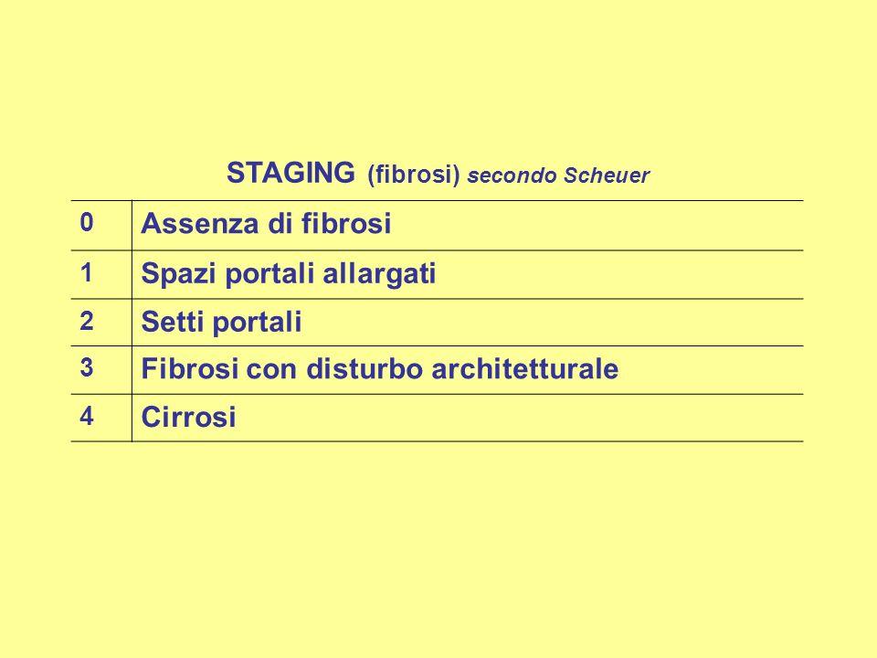 STAGING (fibrosi) secondo Scheuer