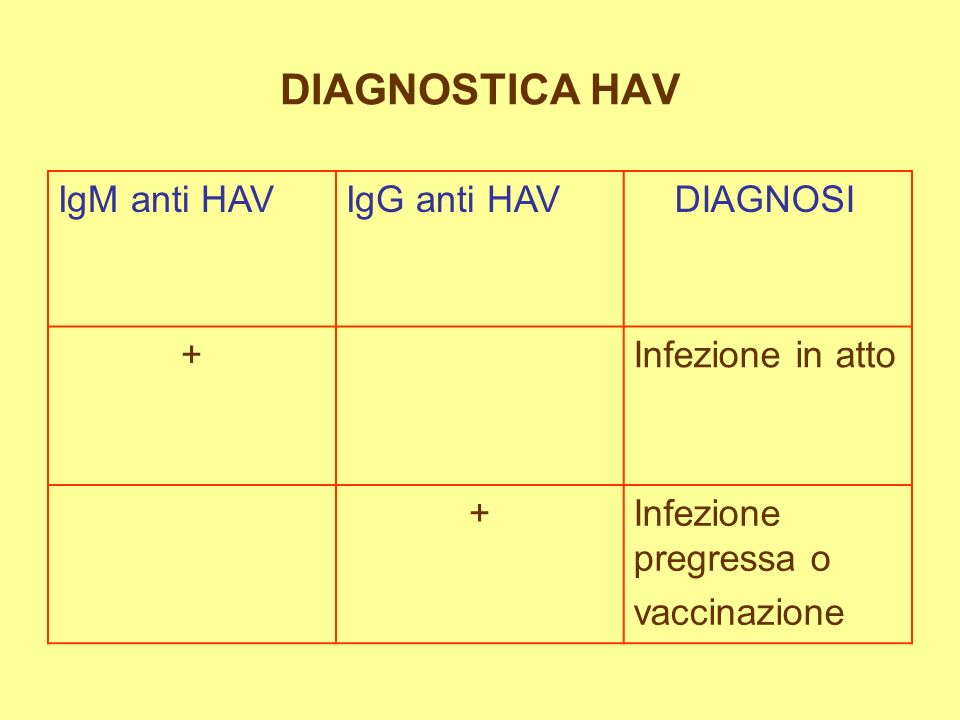 DIAGNOSTICA HAV IgM anti HAV IgG anti HAV DIAGNOSI + Infezione in atto