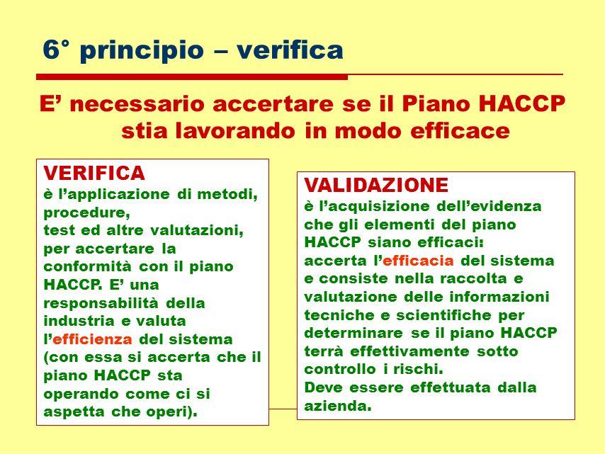6° principio – verificaE' necessario accertare se il Piano HACCP stia lavorando in modo efficace. VERIFICA.