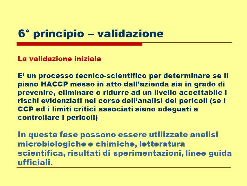 6° principio – validazione