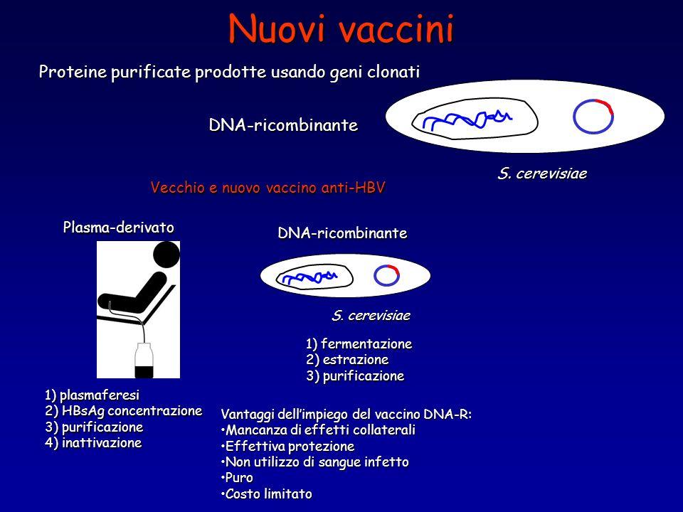 Nuovi vaccini Proteine purificate prodotte usando geni clonati