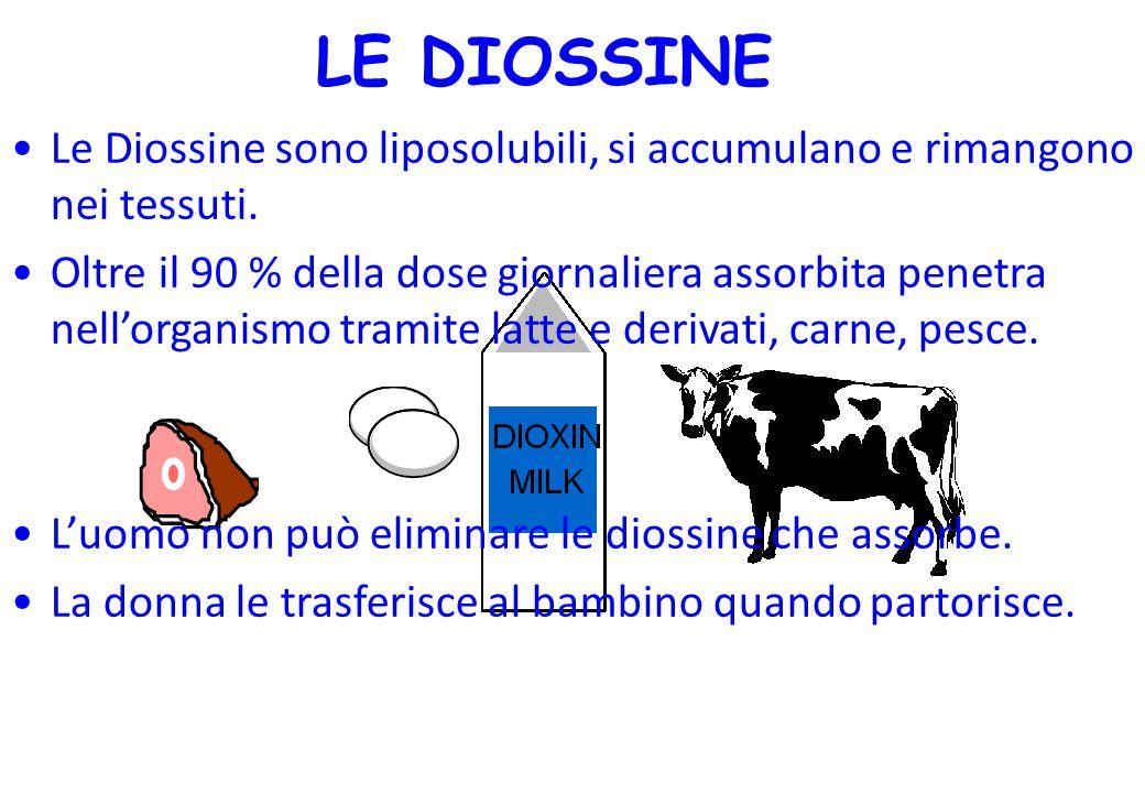 LE DIOSSINE Le Diossine sono liposolubili, si accumulano e rimangono nei tessuti.
