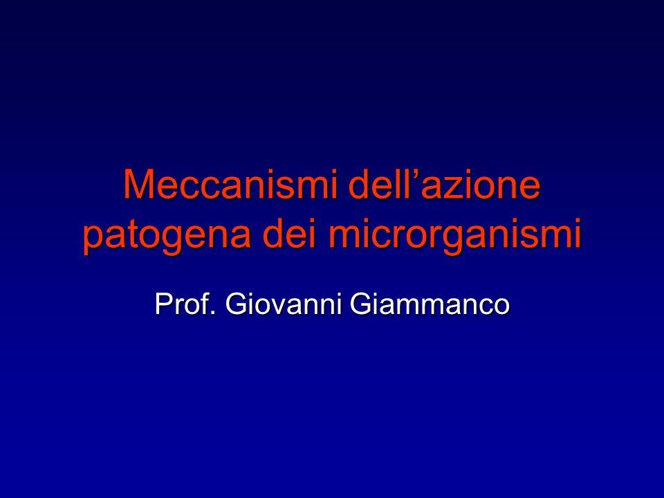Meccanismi dell'azione patogena dei microrganismi