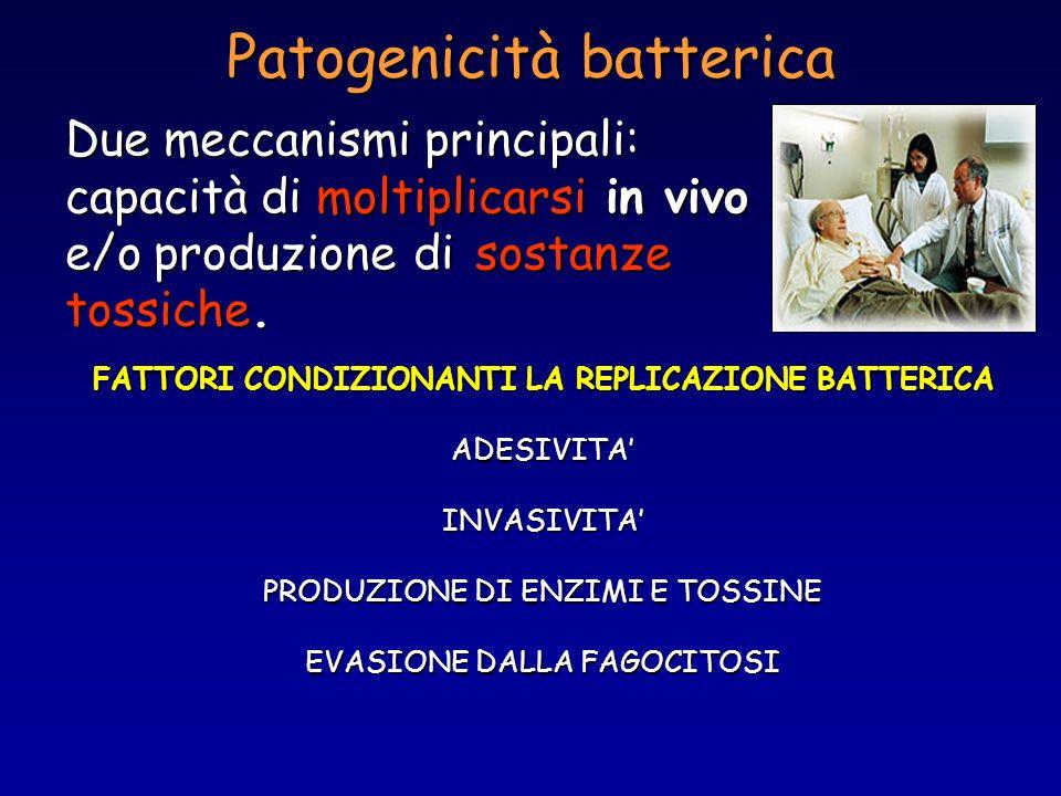 Patogenicità batterica