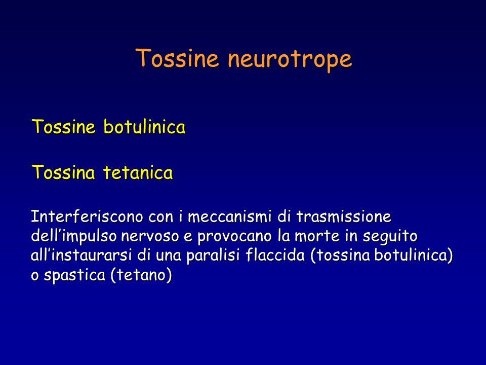 Tossine neurotrope Tossine botulinica Tossina tetanica