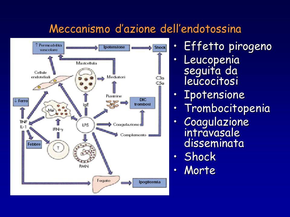Meccanismo d'azione dell'endotossina