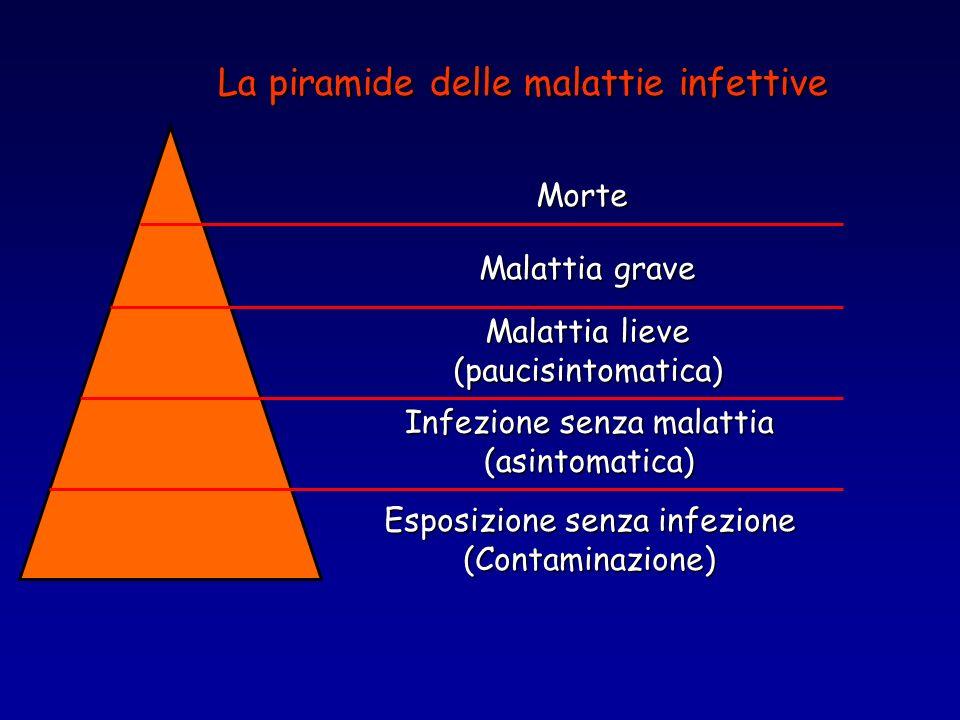 La piramide delle malattie infettive