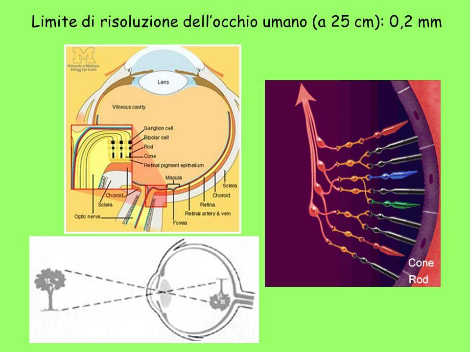 Limite di risoluzione dell'occhio umano (a 25 cm): 0,2 mm