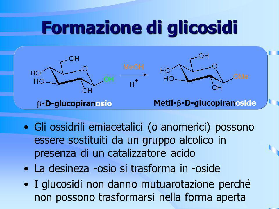 Formazione di glicosidi