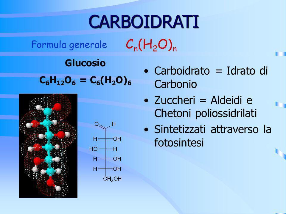 CARBOIDRATI Cn(H2O)n Carboidrato = Idrato di Carbonio