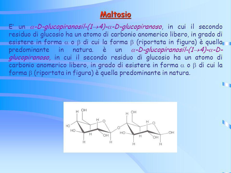Maltosio