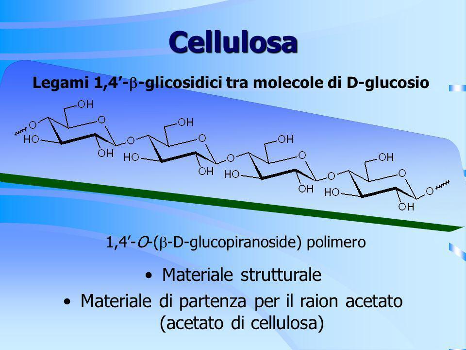 Legami 1,4'-b-glicosidici tra molecole di D-glucosio