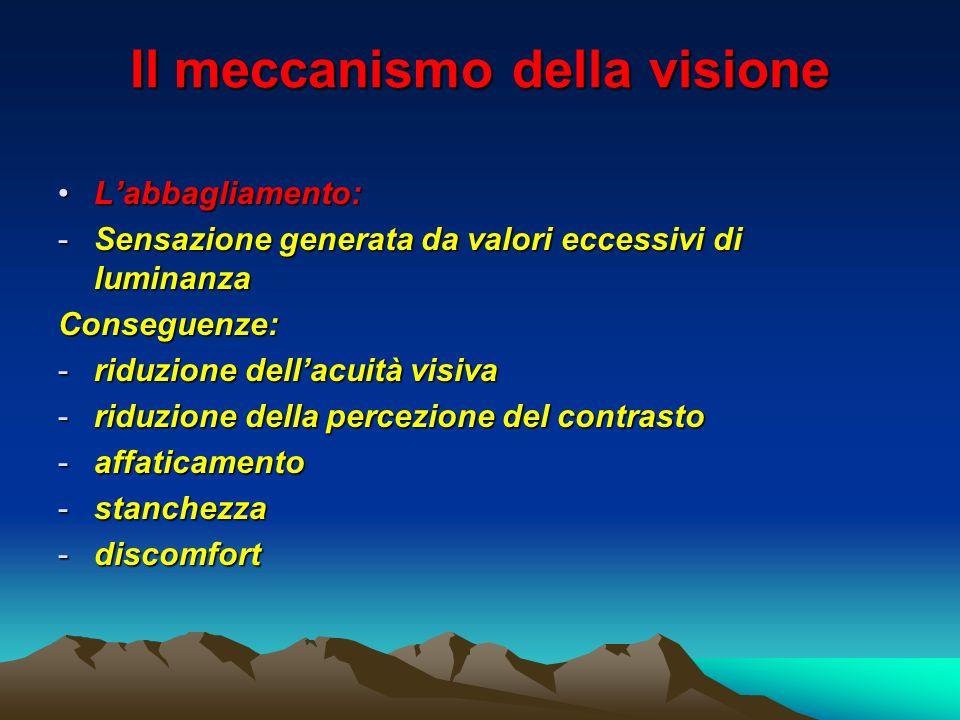 Il meccanismo della visione