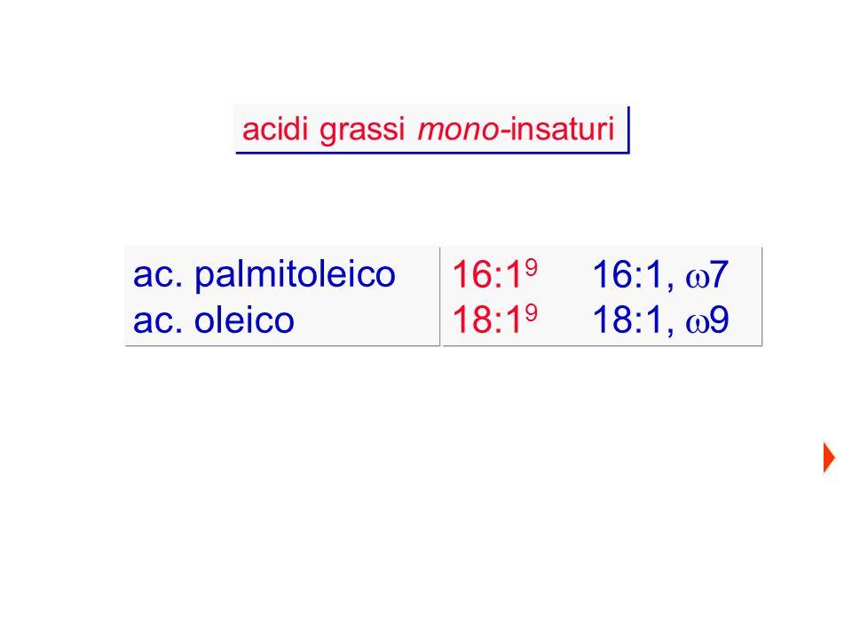 ac. palmitoleico ac. oleico 16:19 16:1, w7 18:19 18:1, w9