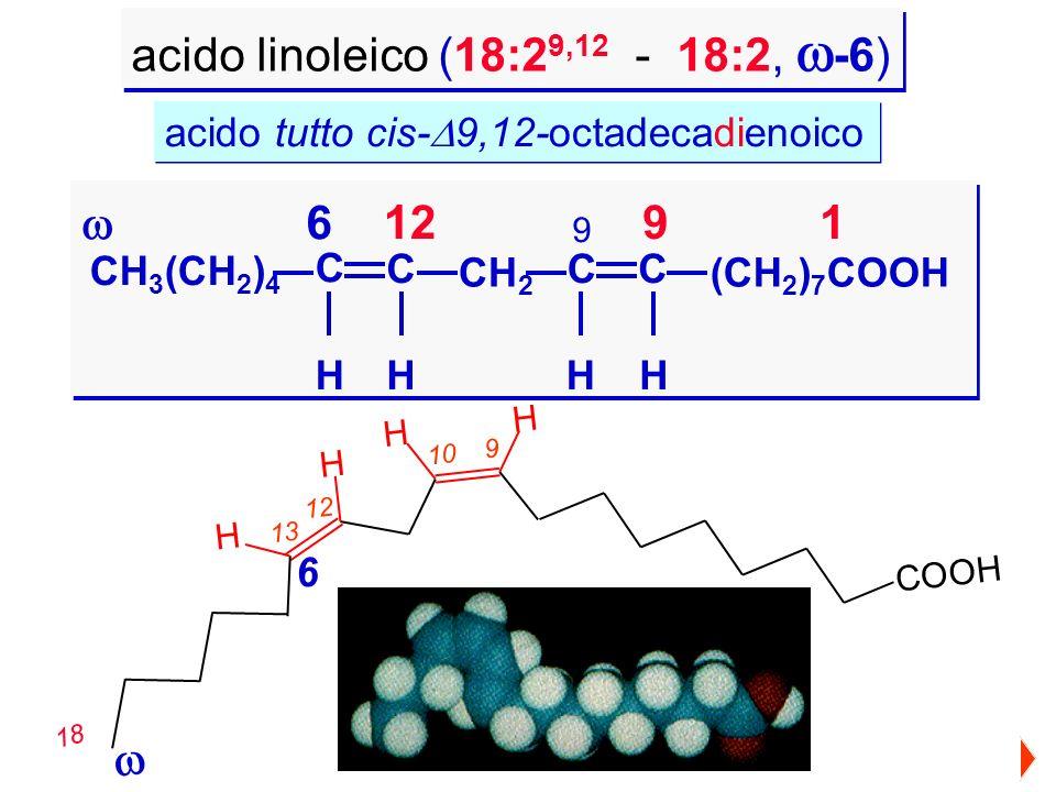 acido linoleico (18:29,12 - 18:2, -6)