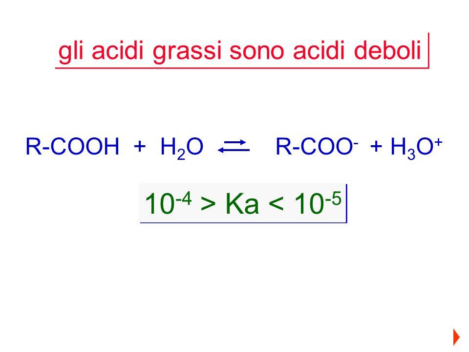 10-4 > Ka < 10-5 gli acidi grassi sono acidi deboli