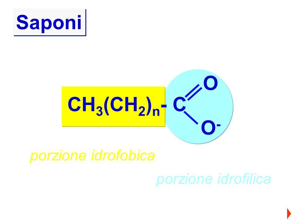 Saponi O CH3(CH2)n- C O- porzione idrofobica porzione idrofilica